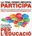 Consulta ciutadana per l'educacií
