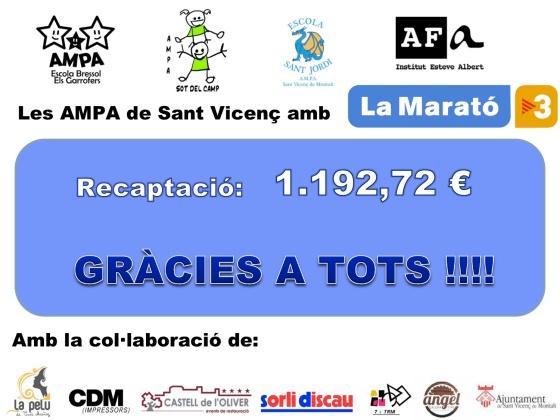 La Marató 2013