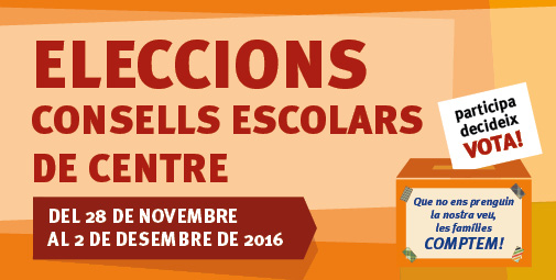 eleccions-consells-banner-xarxes